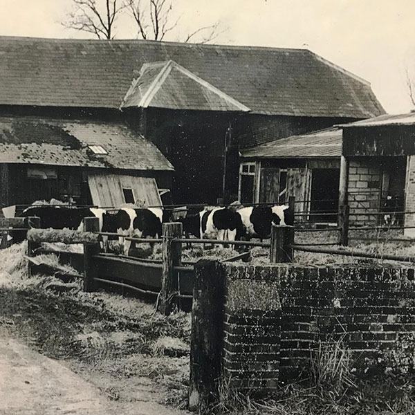 Old Michelmersh Farm in 1970